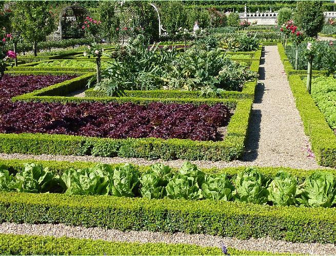Candida Martinellis Italophile SiteItalian Gardens